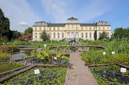 Botanische Gärten In Deutschland : botanische g rten bonn ~ Lizthompson.info Haus und Dekorationen